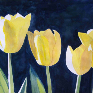 Four Tulips 18 x 24 watercolor