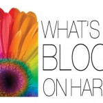 What's Blooming On Harrison 2017 - Call For Artists