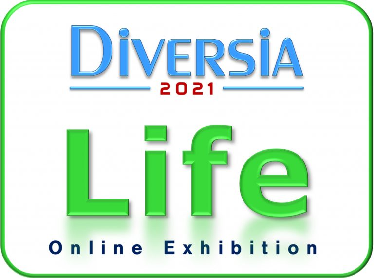 Diversia: Life (Online International Group Exhibition) – Call For Artists